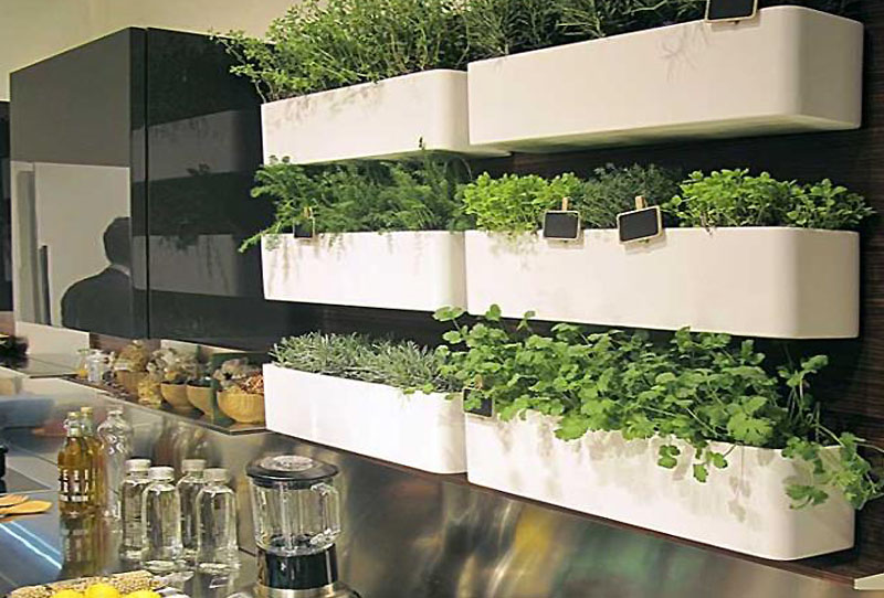 Tips for growing a kitchen herb garden make eat simple for Making a kitchen garden