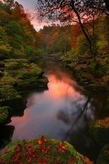 autumn 444