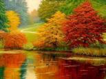 autumn 555