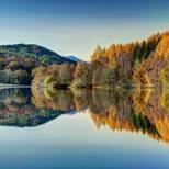 autumn 888